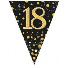 Sparkling Fizz Black & Gold Flag Bunting 3.9m 18 P1