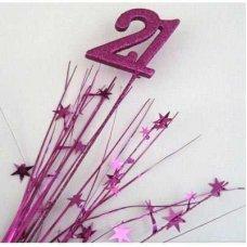 Number 21 Fuchsia P1
