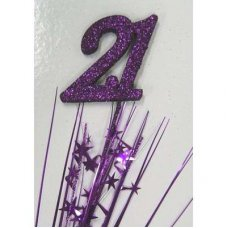 Number 21 Purple P1