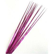 Grass Fuchsia P1