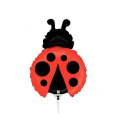 Little Ladybug Mini 14