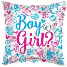 Boy or Girl ? (154731-18) 18