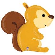 SPECIAL! Woodland Squirrel 36