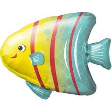 SPECIAL ! Angelfish 25
