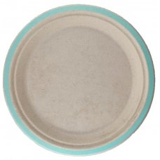 Sugarcane Lunch Plates 180mm Mint Green P10x10