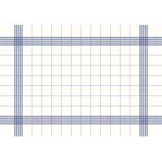 Napkin Towel 38x54cm Blue Ctn250